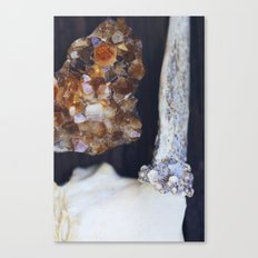 Citrine and Bone Canvas Print