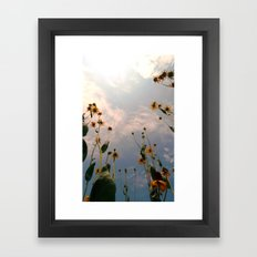 MAUA Framed Art Print