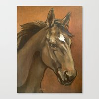 Sound Reason - Stallion Canvas Print