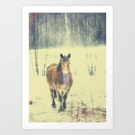 Art Print - Wandering beauty - HappyMelvin
