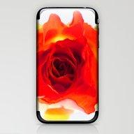 Inside The Rose iPhone & iPod Skin