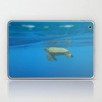 Hawaiian Green Sea Turtle Laptop & iPad Skin