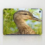 Duck Portrait iPad Case