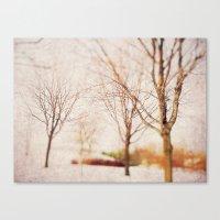 Woodland Dreams Canvas Print