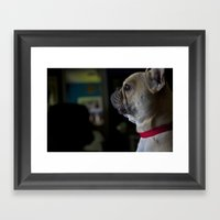 Sophie The French Bulldo… Framed Art Print