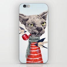 Sphynx cat iPhone & iPod Skin