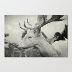Last King (Ultimate) Canvas Print