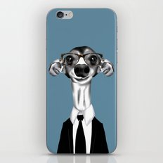 Greyhound in suit iPhone & iPod Skin