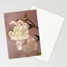 White flower and texture Stationery Cards