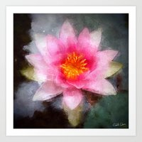 Water Lily Flower Art Print