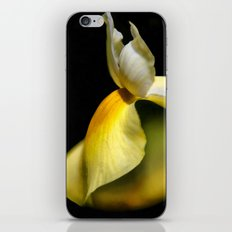 A Tender Touch iPhone & iPod Skin
