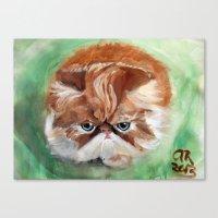 Grumpy Persian Canvas Print