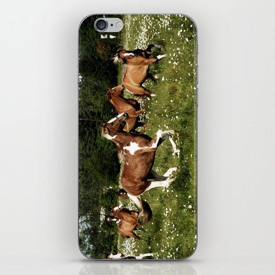 Spring Horse Run iPhone & iPod Skin