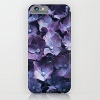 Hortensia iPhone 6 Slim Case