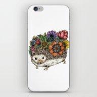 Flower Hedgehog iPhone & iPod Skin