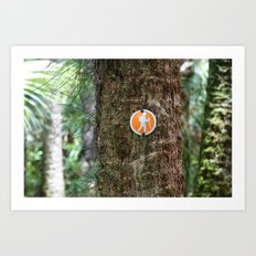 Florida Hike  Art Print