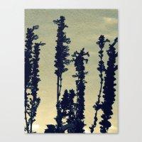 Paper Lavender Canvas Print