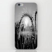 Wheat Sunrise B&W iPhone & iPod Skin
