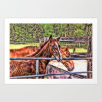 Horses And Gate Art Print