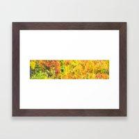 Impressions of Autumn Framed Art Print