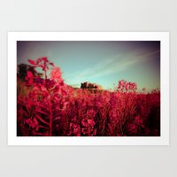 Early Morning, Bamburgh … Art Print