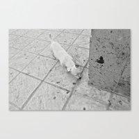 white corner Canvas Print