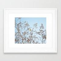 Little Yellow Bird Framed Art Print