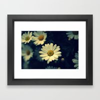 Fresh Daysies flowers 0944 Framed Art Print
