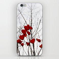 Love Leaves iPhone & iPod Skin