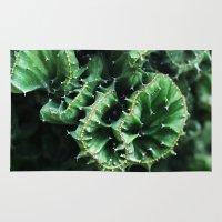 Emerald green Cactus Botanical Photography, Nature, Macro, Rug