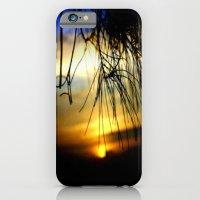 Sunset between pine Needles iPhone 6 Slim Case