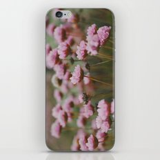 Pale Pink iPhone & iPod Skin