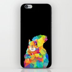 Geometric Squirrel iPhone & iPod Skin
