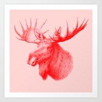 Moose Red Art Print