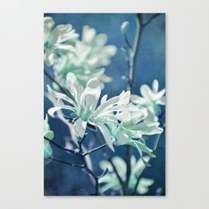 fresh blues Canvas Print