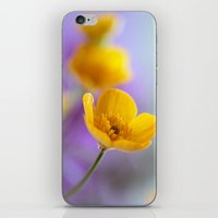 Humble Buttercup iPhone & iPod Skin
