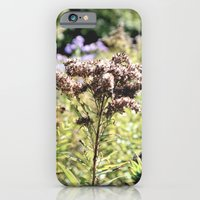 Pale Landscape iPhone 6 Slim Case