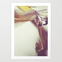 Last Breaths - Colour Art Print