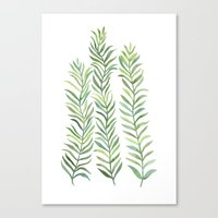 Green Branches Canvas Print