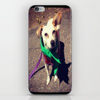 Blanca Boo To The Rescue iPhone & iPod Skin