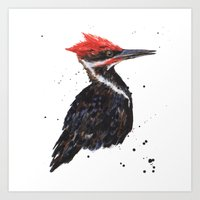Woodpecker Painting, Bir… Art Print