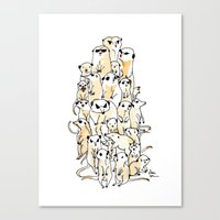 Wild Family Series - Meerkat Canvas Print