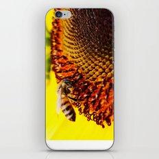 Busybee iPhone & iPod Skin