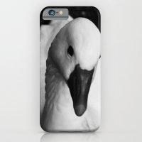White Swan  iPhone 6 Slim Case