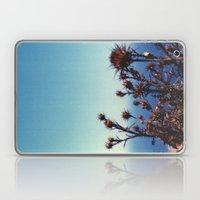 Sun-Bleached Blossom Laptop & iPad Skin