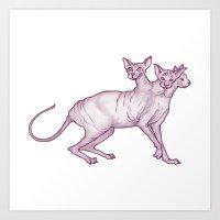 Feline Cerberus in the Sun Art Print