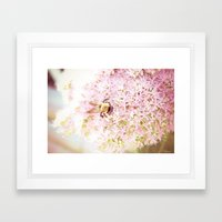 Nature of a Bee Framed Art Print