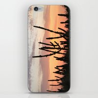 Cactus Sunset iPhone & iPod Skin