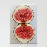 Fig 1 Stationery Cards