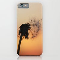 iPhone & iPod Case featuring Summer Nights by LauraWilliams95